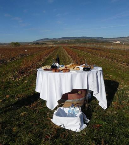 Exquisite Rioja (1)